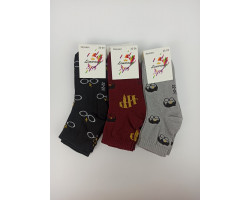 Шкарпетки дитячі Limerance стрейч Гарі Потер (розмір 22-24) 12шт/уп